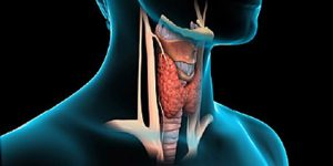 Caribbean Health Access Thyroid Procedures